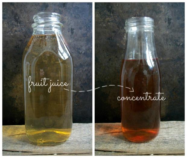 fruit juice concentrate2